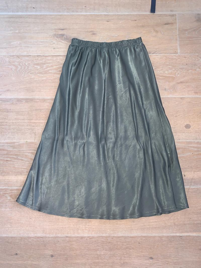 Shiny Skirt